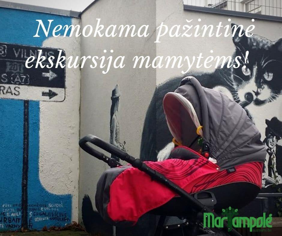 Nemokama pažintinė ekskursija mamytėms