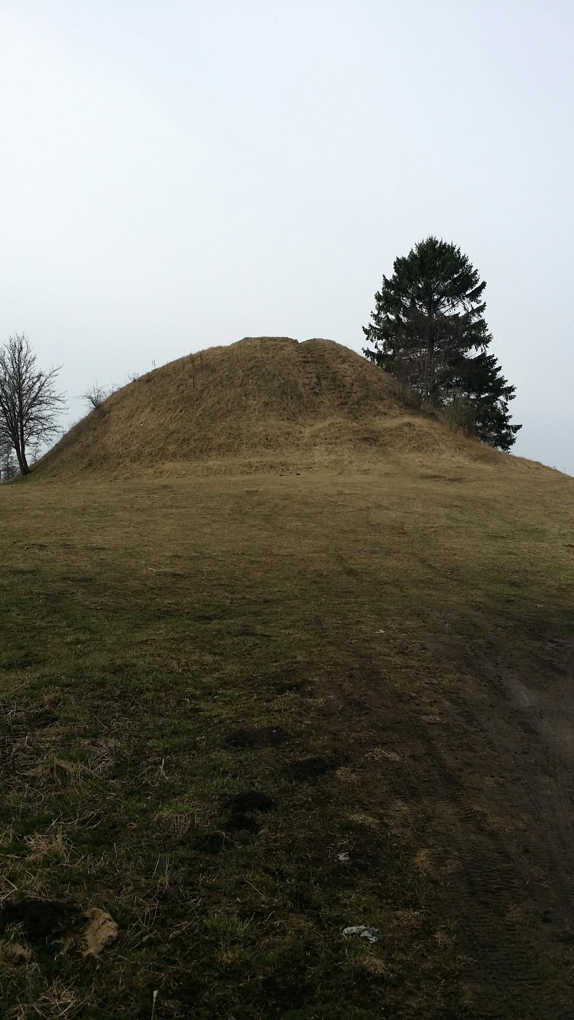 Šakališkių piliakalnis