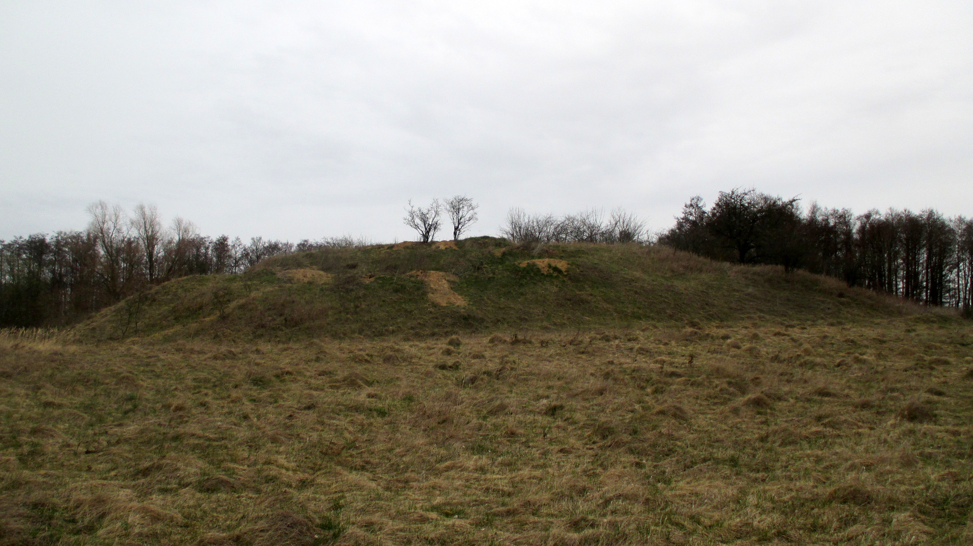 Mound of Liudvinavas and Old Village
